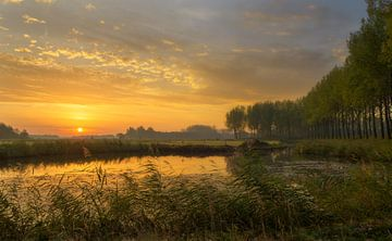 Lever du soleil d'or aux Pays-Bas sur Jos Pannekoek