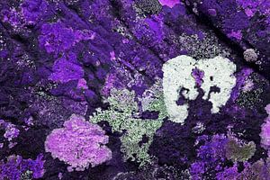Gekleurde rotsen 3