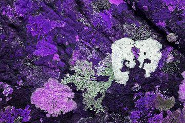 Gekleurde rotsen 3 van Greetje van Son
