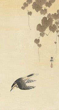 Vogel in neerwaartse vlucht van Ohara Koson