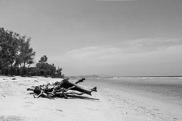 Treibholz am Strand von Femke Ketelaar