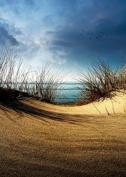 Dunes...........