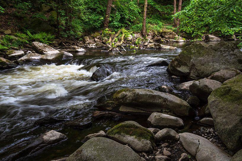 Landscape with river Bode in the Harz area, Germany van Rico Ködder