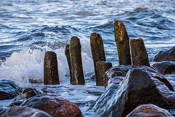 Ostseeküste bei Heiligendamm von Rico Ködder