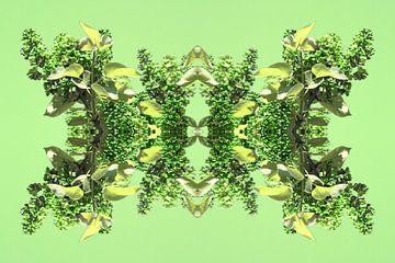 Seringenfantasie lente van Corina Scheepers-de Mooij