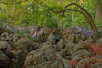 Felsenmeer, Hemer in de herfst, indrukwekkend, bijna sprookjesachtig landschap, nationale geotoop in van wunderbare Erde