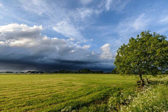 Lente storm boven de weilanden