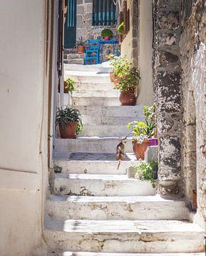 Typische griechische Straße von Sharon de Groot