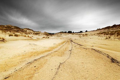 Dünenlandschaft von Ralf Lehmann