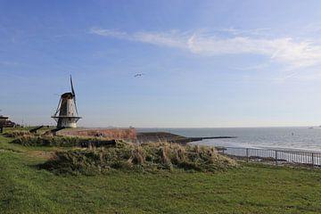 De verhalen uit Vlissingen van Nina Rotim