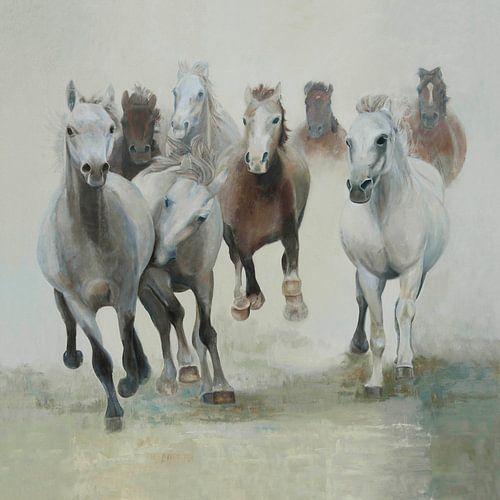 Paarden, groep paarden in galop