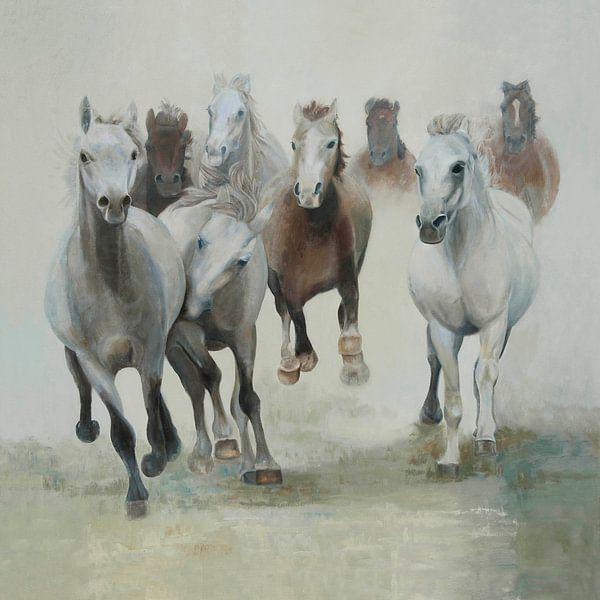 Paarden, groep paarden in galop van Color Square