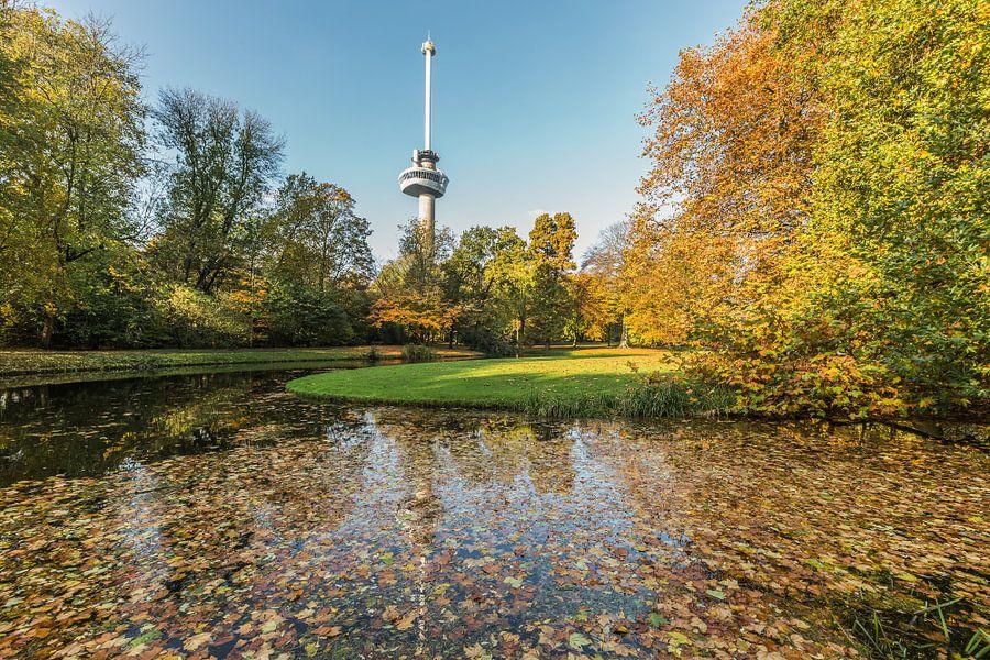 Herfst in het Park bij de Euromast in Rotterdam van MS Fotografie