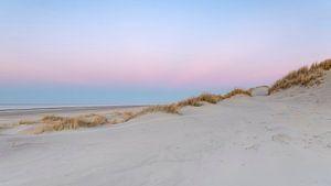 Pink Dunes 2