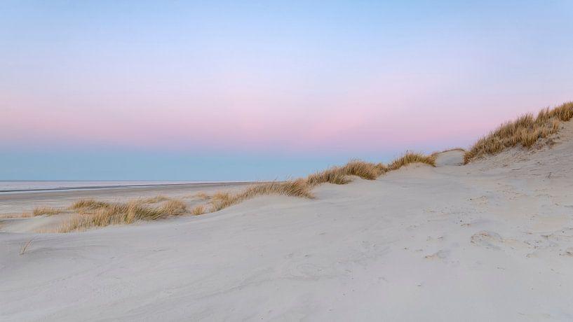 Pink Dunes 2 van Wad of Wonders