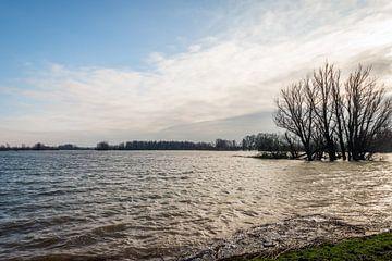 Hoogwater in Buitenpolder Het Munnikenland van Ruud Morijn