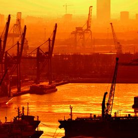 Wereldhaven Rotterdam van Rogier Vermeulen
