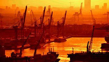 Welthafen Rotterdam von Rogier Vermeulen