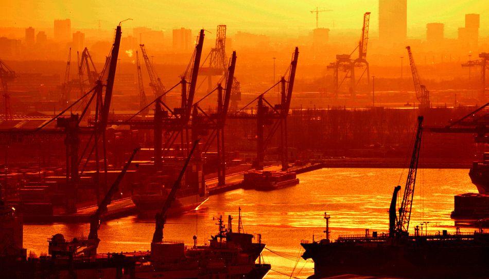 Wereldhaven Rotterdam