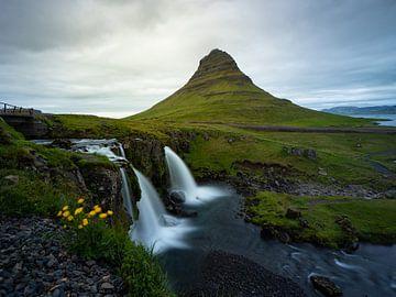 Landschaft mit gelben Blumen, Wasserfällen und dem Berg Kirkjufell auf der Halbinsel Snæfellsnes | R von Teun Janssen