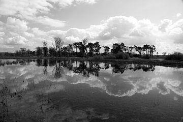 Wolken, bomen en de reflectie in het water van Wytze Plantenga