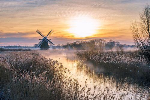 Hollands landschap van