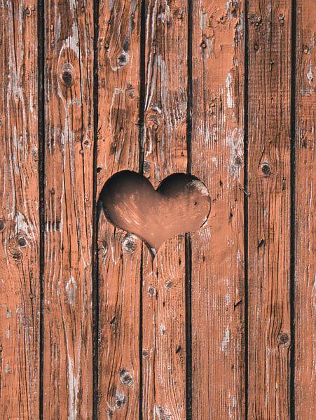 Liefde is overal van Nynke Nicolai