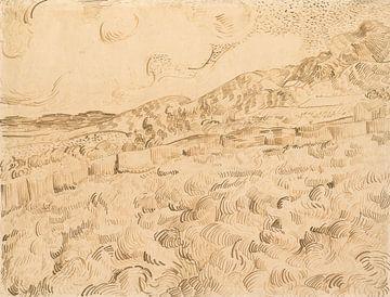 Vincent van Gogh. Weizenfeld nach dem Sturm
