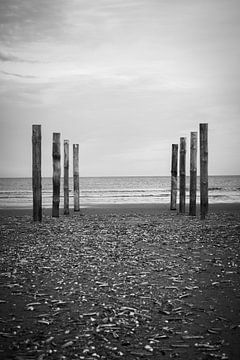 Wood poles in the sand, Schiermonnikoog II von Luis Fernando Valdés Villarreal Boullosa