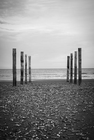 Wood poles in the sand, Schiermonnikoog II van Luis Fernando Valdés Villarreal Boullosa