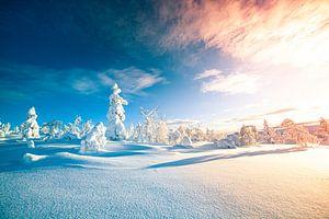 Sonnenaufgang Lappland im Schnee