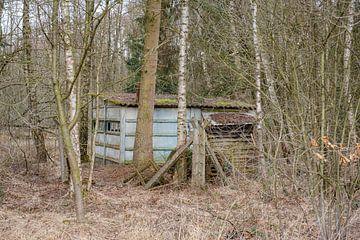 Beton im Wald von Johan Vanbockryck