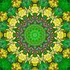 Sweet Amber van Frans Blok thumbnail