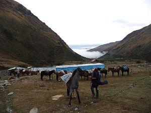 'Klaar voor de tocht', Inca Trail- Peru