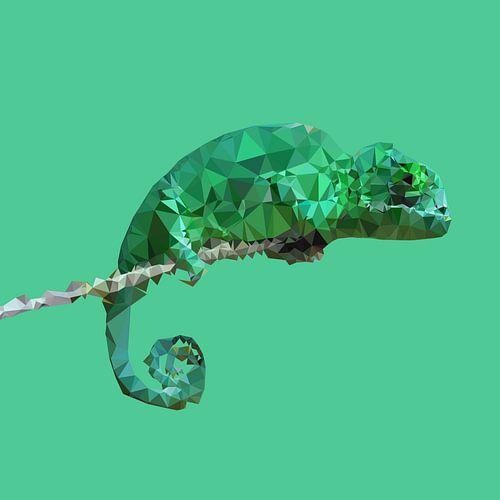 Kameleon van