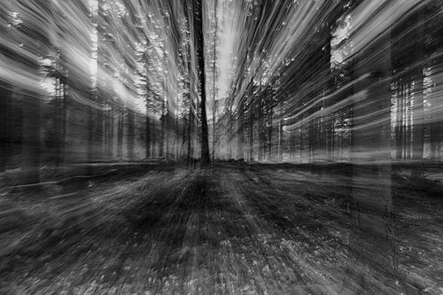 Abstract natuur landschap van Wendy Hilven