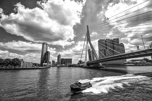 Watertaxi bij de Erasmusbrug in Rotterdam van