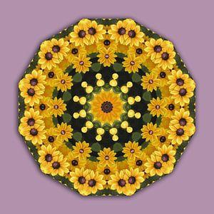 Gelbe Magaritten, Black-eyed Susans, Floral mandala-style,