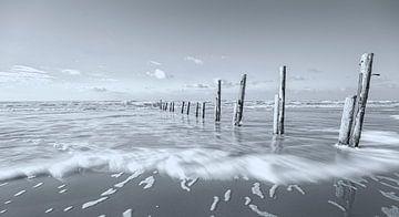 Küstenharmonie II von Kirsten Warner