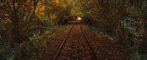 Spoorweg zoekend naar het licht