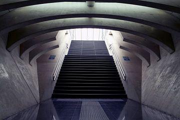 Résumé escalier en pierre sur Maurice de vries