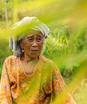 Vrouw Bali van Jeannine Van den Boer