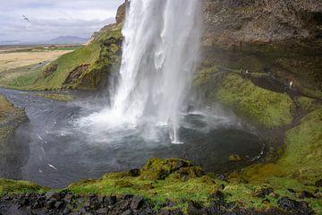 Seljalandsfoss-Wasserfall in Island von Reis Genie