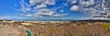 Panorama van de duinen van Jan Kranendonk