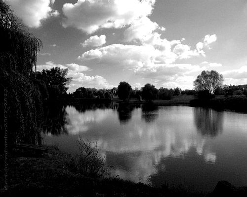Reflections von