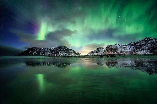 De natuurshow van Sven Broeckx
