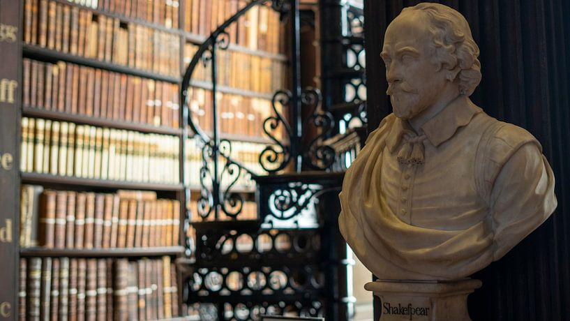 Buste Trinity College Bibliotheek van Terry De roode