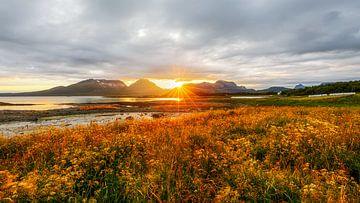 Zon verdwijnt bijna achter een Noorse bergrug van Karla Leeftink