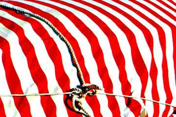 Red Stripes Tied von Yannik Art