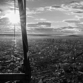 Zicht over Parijs vanop Tour Montparnasse van Joris Pannemans